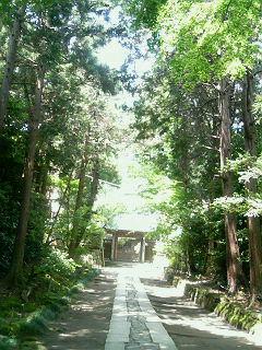 あ、そうだ。鎌倉に行こう。