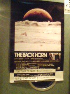 THE BACK HORN!