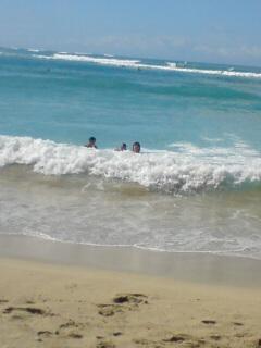 今日も海へ♪
